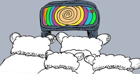 8 TV Sheep