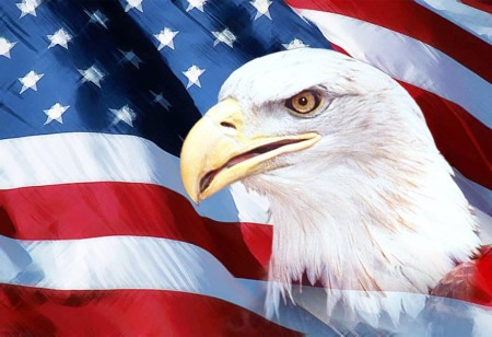 US Flag Eagle 2