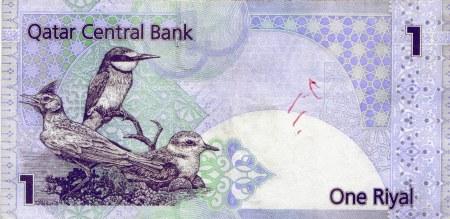 11 qatar banknote