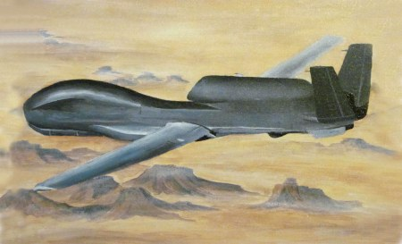 5 global hawk painting