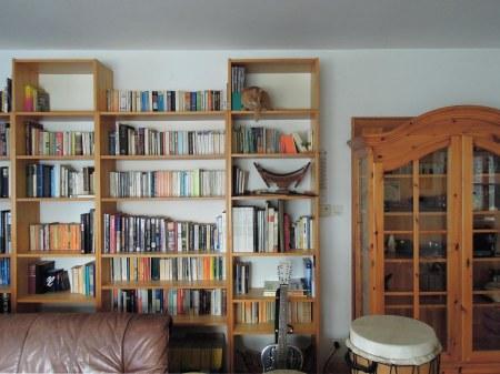5 Gandhi bookshelf DSCN2210