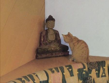 6 Gandhi Buddha DSCN2120