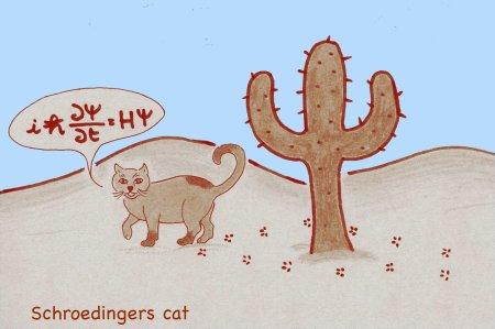 4 Schroedingers cat