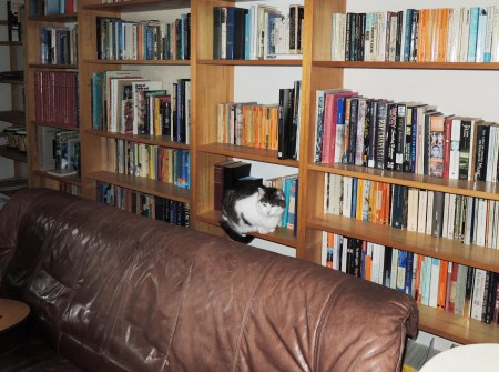 Sumo book shelf DSCN0638