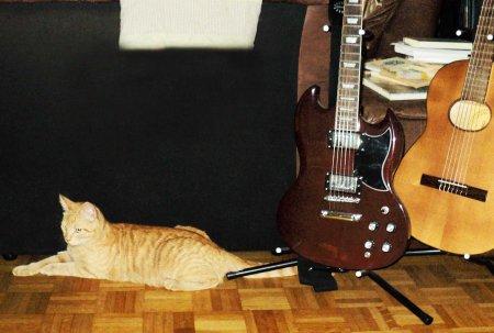 Gandhi guitars DSC00707