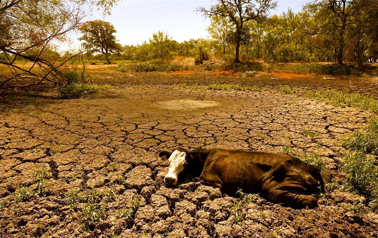 The issues of the drought in morocco