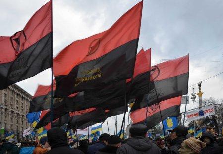 Maidan flags 2