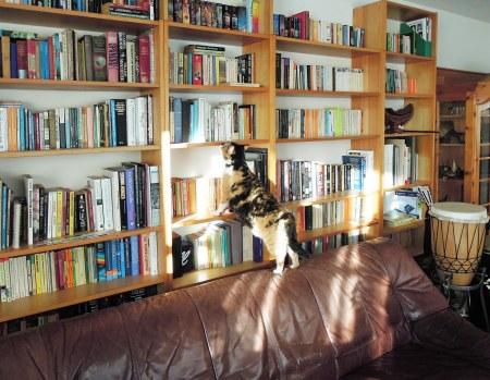 Rosy bookshelf DSCN2932