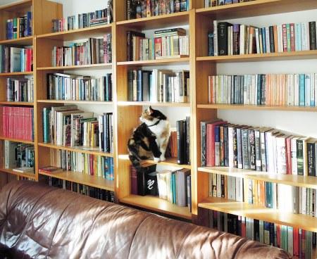 Rosy bookshelf DSCN2939