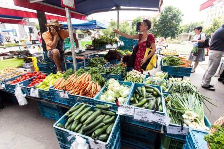 Фермерский-рынок-Naplavka-7