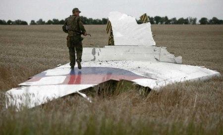 MH17 debris 7