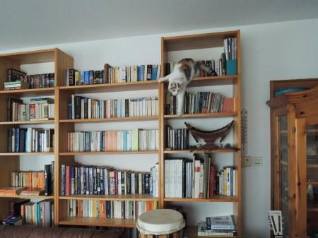 Linda bookshelf DSCN1172