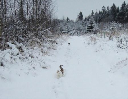 Linda, Min Ki snow DSCN3452