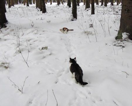 Linda, Min Ki snow DSCN3454