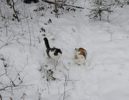 Linda, Min Ki snow DSCN3464