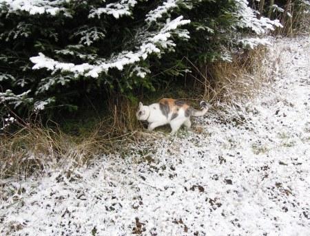 Lindas first winter 9