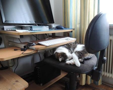 Min Ki computer sleeping DSCN0629