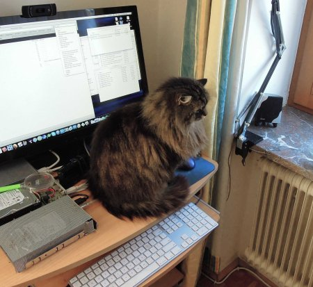 Wendy computer DSCN3522