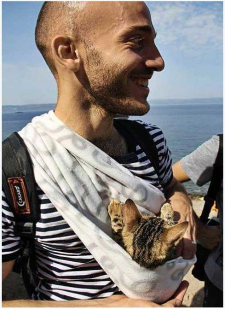 refugee cat 5