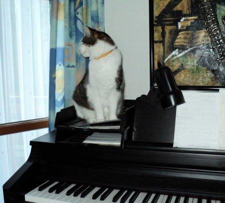 Min Ki piano DSC00838 2