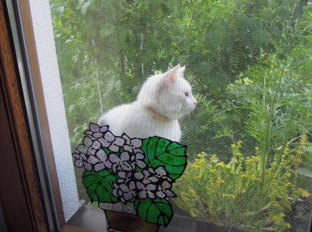 Lucia window DSCN4585
