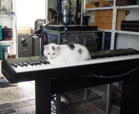 Lucia keyboard DSCN4629