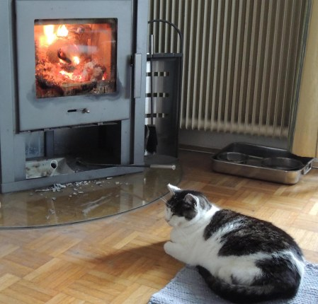 sumo-stove-dscn0878