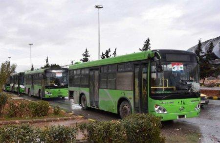 aleppo-green-buses-1