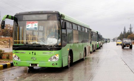 aleppo-green-buses-2