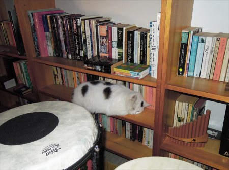 lucia-bookshelve-dscn4738