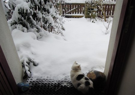 lucia-snow-entrance-door-dscn4971